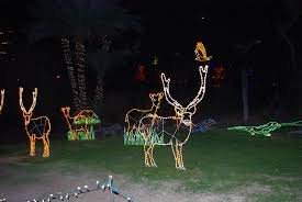 Phoenix Zoo Christmas Lights by Zoo Turns Into A Musical Light Extravaganza Arizona Destinations