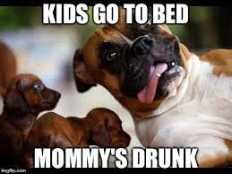 Boxer Meme - image tagged in boxer dog imgflip