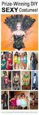 Contest Winning Halloween Costumes Halloween Costumes Won Prizes Contests