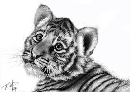 25 trending baby animal drawings ideas on pinterest draw cute