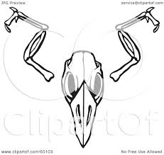 royalty free rf clipart illustration of a black and white bird