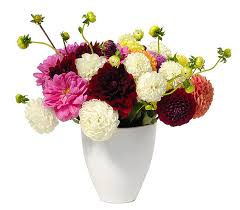 free flower delivery buy flowers online send flowers to the us with free delivery