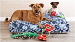 cuccia per cani da esterno tutte le offerte cascare a dalani lettini per cani coccolate il vostro cucciolo