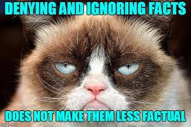 Cat Facts Meme - grumpy cat not amused meme imgflip