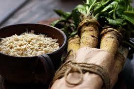 qu est ce que le raifort cuisine le raifort les bienfaits d une plante oubliée présentation