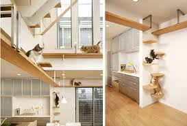build your house use your house smart and build your own cat trees toys etc