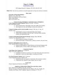 Example Pharmacist Resume by Examples Of Resumes Pet Essay Sample Persuasive Speech Outline