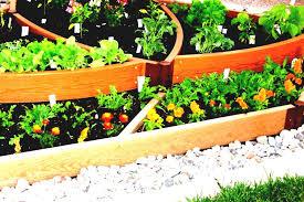 raised bed vegetable garden beds home depot planter for design