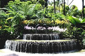 landscaping ideas zen garden inspiration interior designs tropical