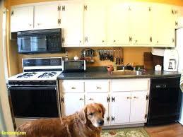 Kitchen Cabinet Design Software Free Free Kitchen Cabinet Design Software Size Of Kitchen Kitchen