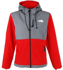 The North Face Mountain Light Jacket North Face Women U0027s Denali Hoodie Black The North Face Shorts The