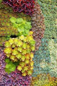 39 insanely cool vertical gardens walls plants and gardens