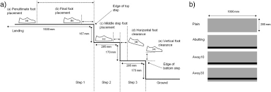 Stair Definition Safety On Stairs Influence Of A Tread Edge Highlighter And Its