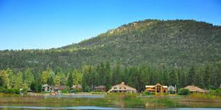 Tree Top Cottage Big Bear by Top 10 Hotels In Big Bear Lake California Hotels Com