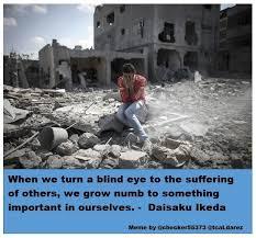Israel Memes - 199 best palestine memes images on pinterest meme memes and
