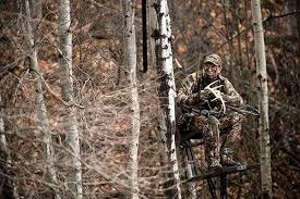 deer treestand location tips field