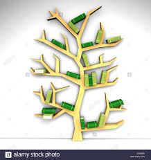 tree of knowledge bookshelf on white background stock photo