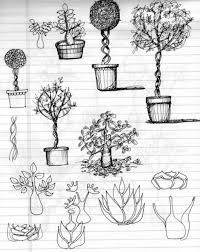 rosa murillo journal tree sketches