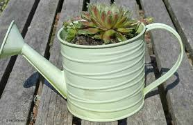 planter for succulents rustic succulent planters these plants can really take the heat