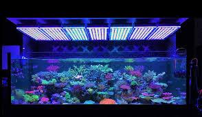 aquarium atlantik v4 reef aquarium led lighting u2022 orphek aquarium led lighting