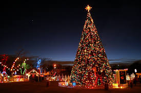 christmas tree new year christmas new city hd wallpaper