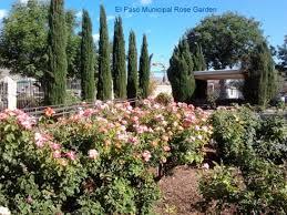 Botanical Gardens El Paso Tour Of Municipal Garden