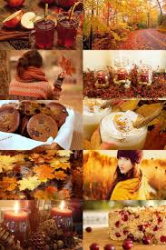 Why Fall Is The Best Season by 584 Best Autumn Leaves Images On Pinterest Fall Autumn