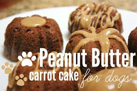 birthday cakes for dogs how to make peanut butter carrot cake for dogs republic