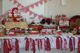 Country Decorations For The Home by Inspiration Ideas Bridal Shower Decorations With Bridal Shower
