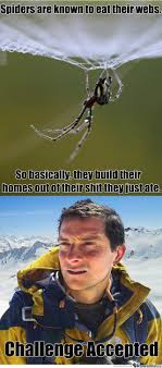 Bear Gryls Meme - can bear grylls be spider man by dawnic meme center