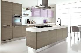 kitchen modern kitchen design the contemporary kitchen design contemporary kitchen ideas amusing