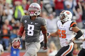 apple martin 2015 apple cup 2015 luke falk is out but the cougs will be fine