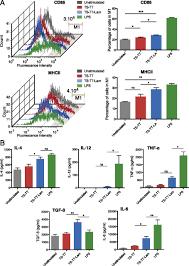enhanced immunogenicity of a tricomponent mannan tetanus toxoid