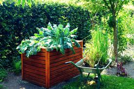 organic gardening 101 making the most out of your backyard the