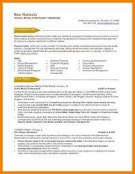 Web Content Manager Resume Media Sales Executive Cv Sample