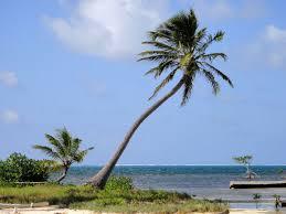 Belize On Map Turneffe Atoll Wikipedia