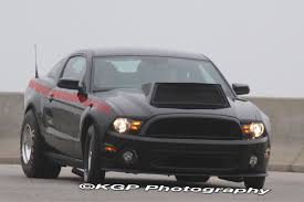 Black Mamba Mustang Would This Hood Clear Svtperformance Com