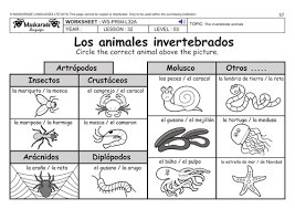 spanish ks2 level 3 ks3 year 7 vertebrate and invertebrate
