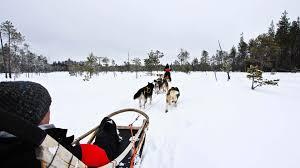 winter wonders in rovaniemi 5 days 4 nights nordic visitor