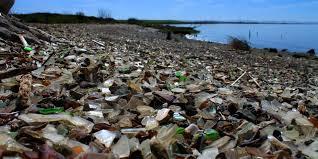 glass beach napa river bay trail glass beach outdoor project