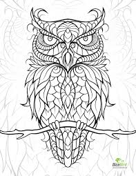 owl coloring pages print funycoloring