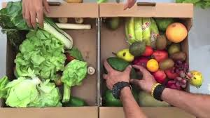 fruits delivery organic foods cafe fruits veg box delivery