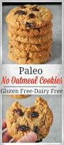 best 25 paleo cookies ideas on pinterest paleo baking paleo