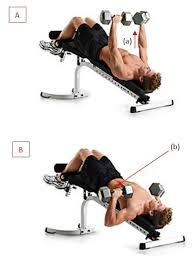 How To Do Dumbbell Bench Press 9 Answers Are There Any Substitutes For Decline Bench Press Quora