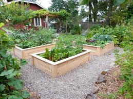 love these raised beds i u0027m thinking the gravel might be a wee bit