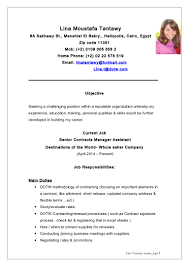 Store Manager Job Description Resume by Lina Tantawy Resume New