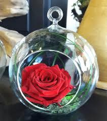preserved roses preserved terrarium jpg