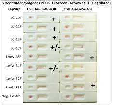 pathogens free full text application of dna aptamers and