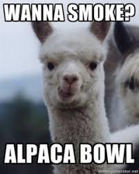 Weed Meme - alpaca bowl weed meme 420 singles