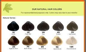 naturcolor 5n light burdock tham khảo website http www naturcolor com hair pinterest